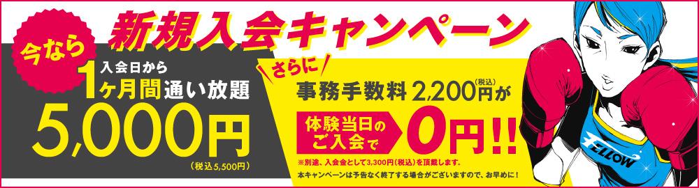 入会日から1ヶ月間通い放題でコミコミで5,000円(税別)本キャンペーンは予告なく終了する場合がございますので、お早めに!